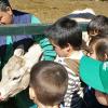 granja_escuela_becerra