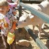 granja_escuela_chicos